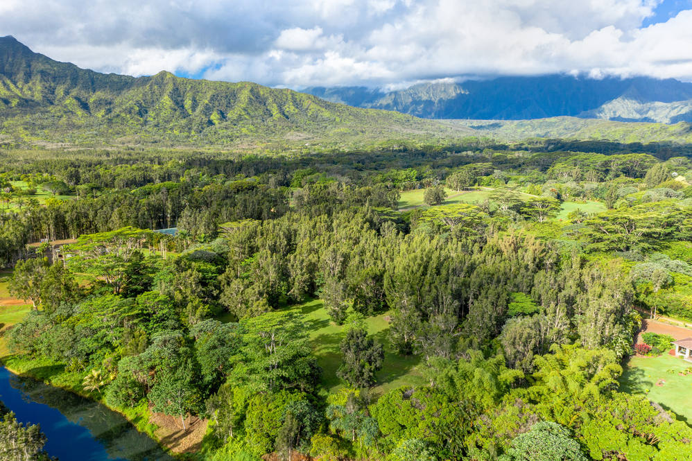 10._Kamooakoa_High_Res-17